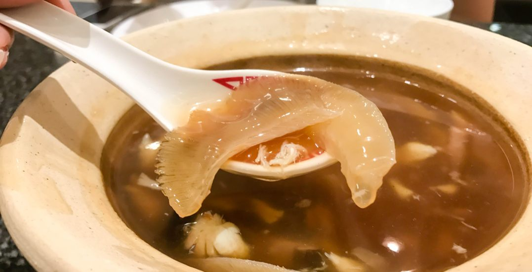 Vancouver city council supports federal bill to ban shark fin imports