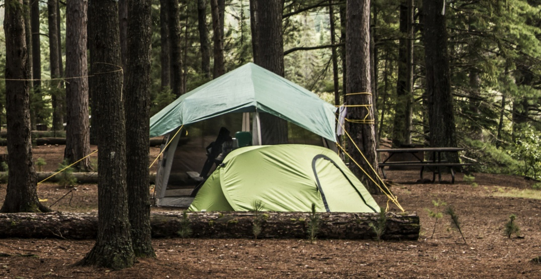 Campsites in Alberta to reopen at 50% capacity next month
