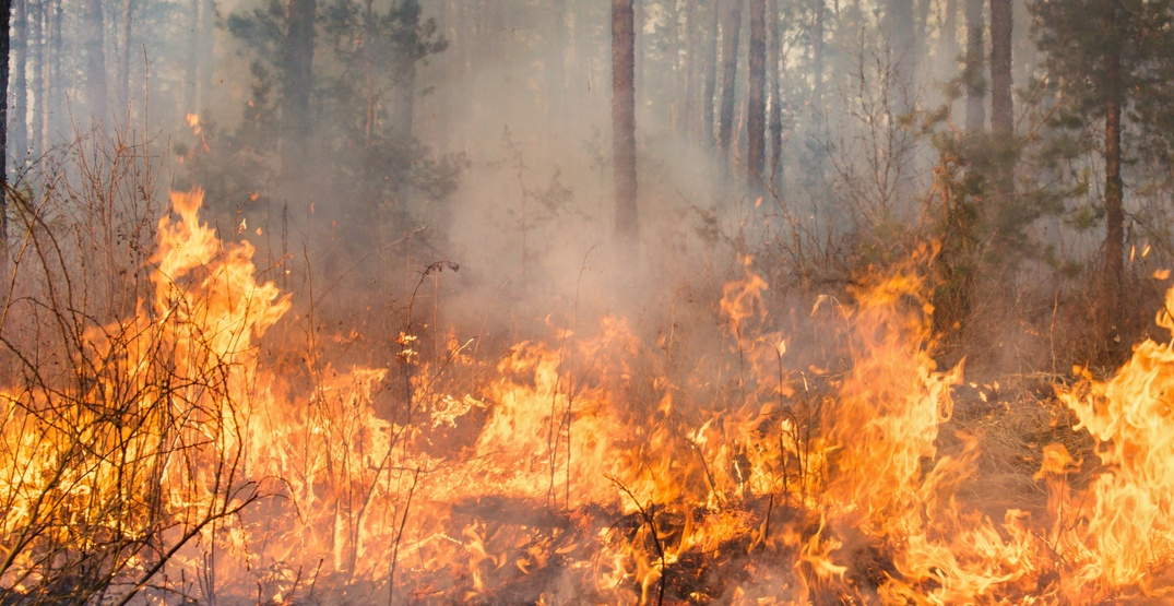 A ban on open burning in BC's coastal fire zone takes effect today