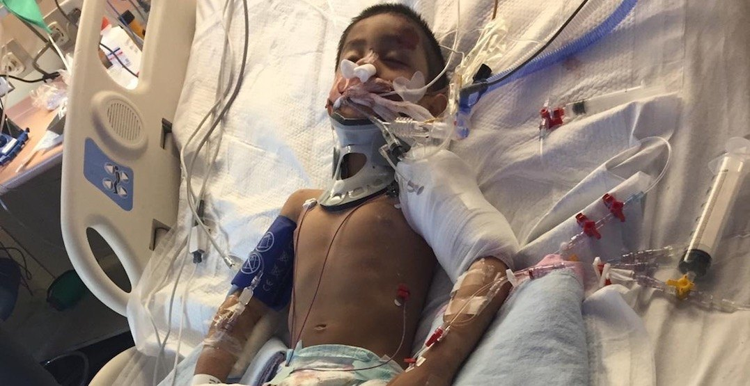 Raptors tickets being auctioned to support 4-year-old hit-and-run victim
