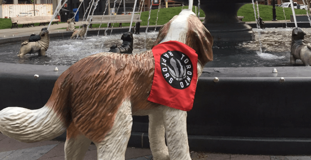 The dogs at Berczy Park are decked out in Raptors gear for the NBA Finals