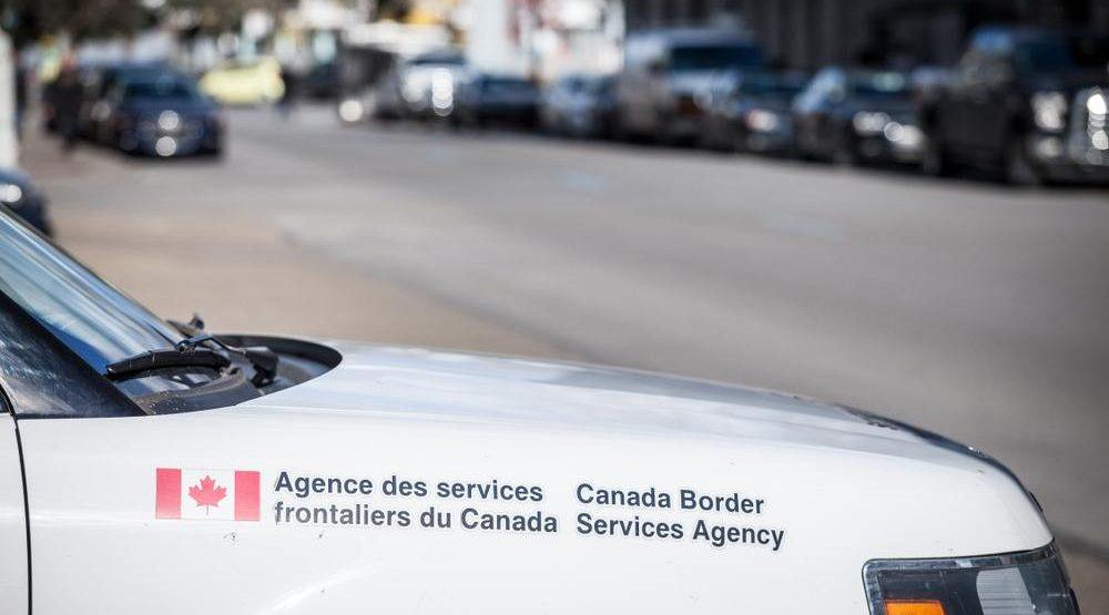 Cannabis border seizures appear to have dropped since legalization