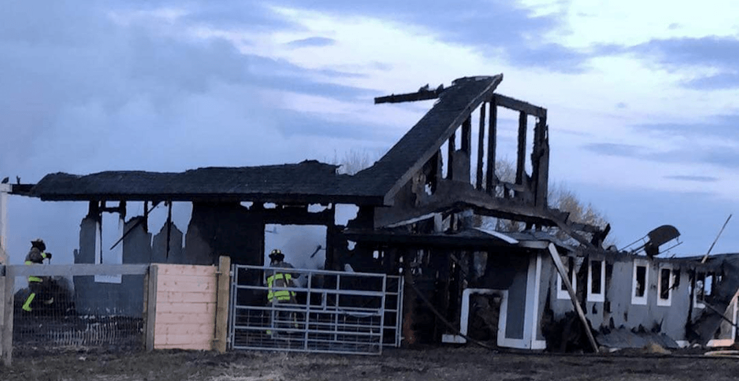 More than 35 animals die in electrical fire at Alberta farm sanctuary