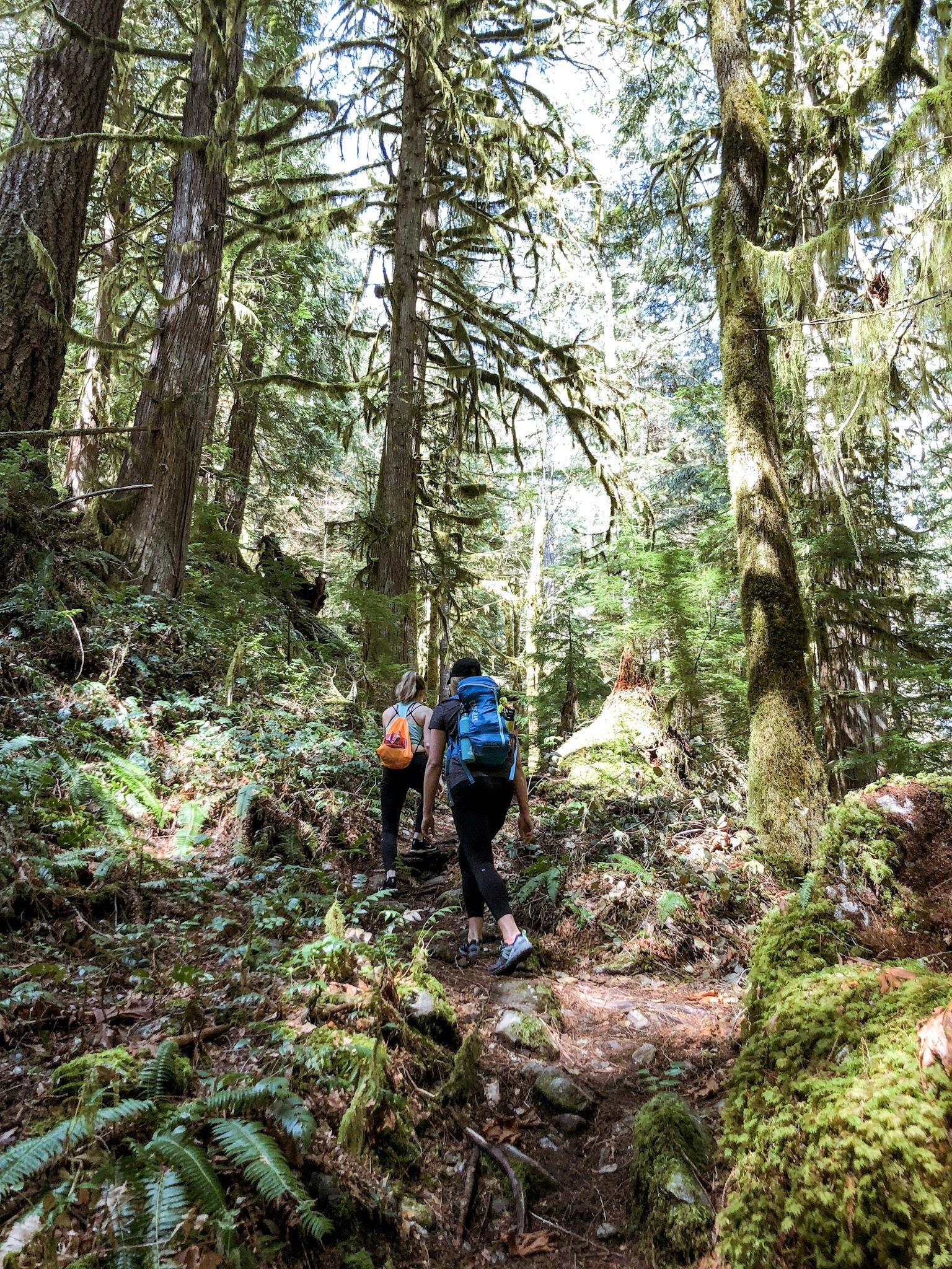 vancouver hike