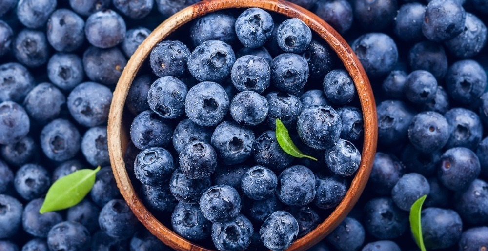 A huge Wild Blueberry Festival is landing in Toronto on August 11