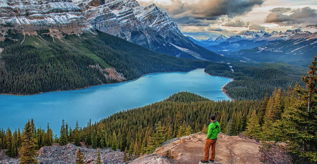 Peyto Lake closed for Summer 2020 due to day-use area improvements