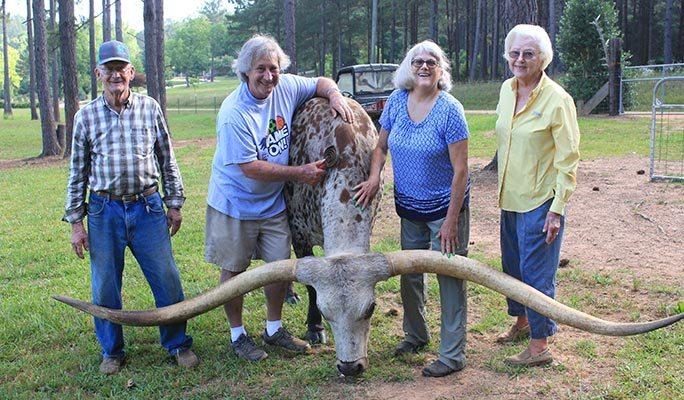 largest horns