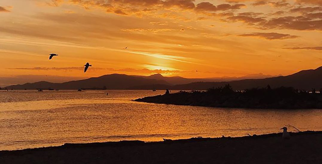 21 photos of Monday's awesome sunset in Vancouver