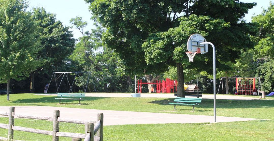 Toronto suspends removal of basketball nets from city parks following complaints