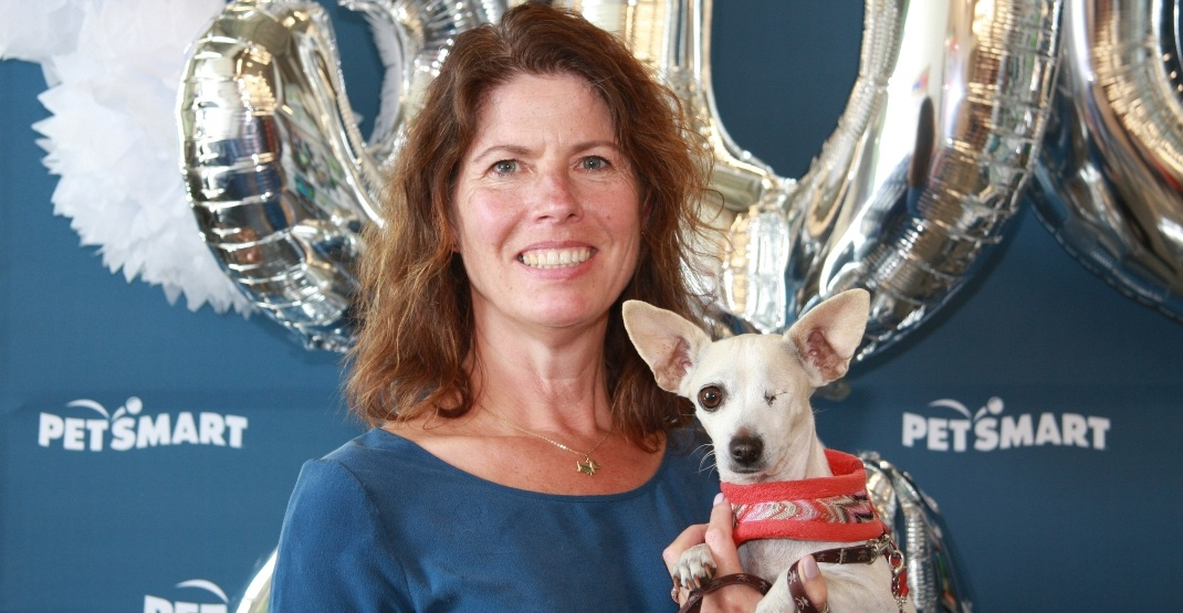One-eyed dog is 300,000th animal adopted through retail project