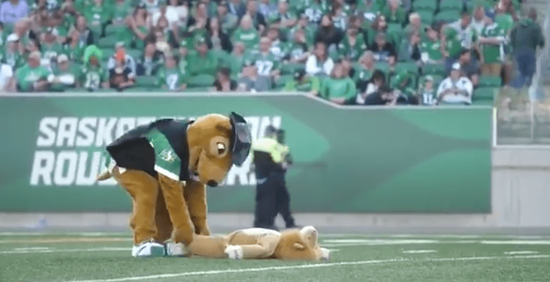 Roughriders under fire for crotch-grabbing mascot's behaviour during BC Lions game (VIDEO)