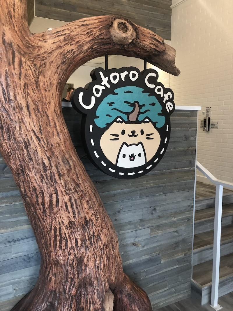 Catoro Cat Cafe