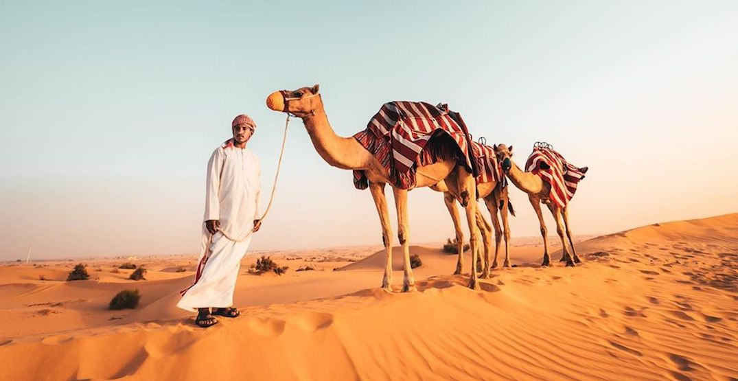 These Instagram accounts will make you want to book a flight to Dubai