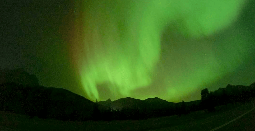 Late-night Northern Lights made for a dazzling display in Alberta this weekend (PHOTOS)