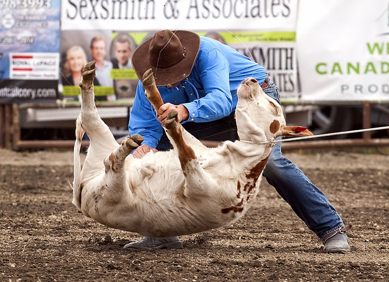 Chilliwack Rodeo / Vancouver Humane Society