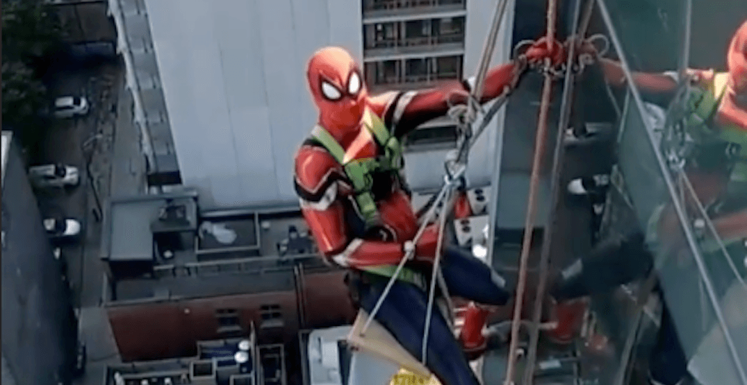 Spiderman spotted in Toronto scaling a building to clean windows