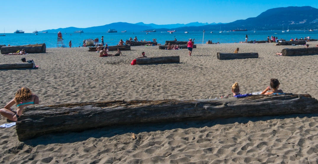 Kitsilano Beach reopens to swimmers after E.coli-related closure on Monday