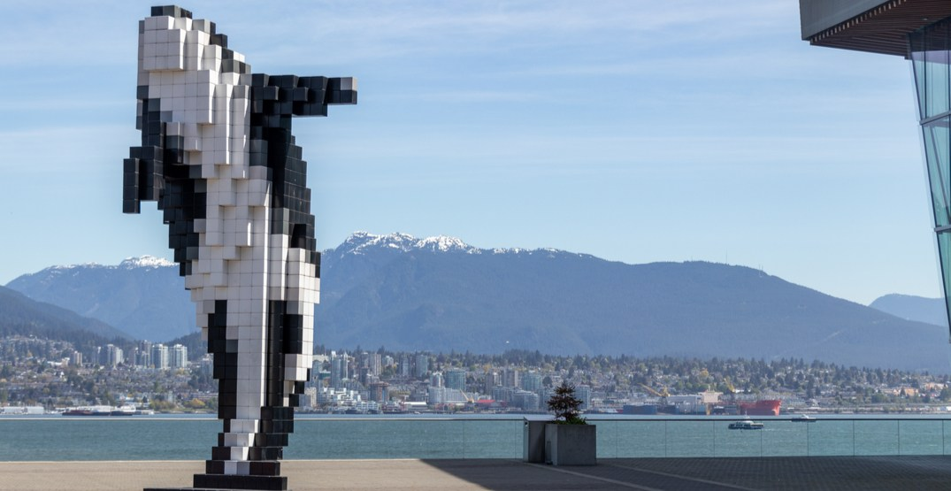 The best Instagram spots in the city according to Tourism Vancouver (VIDEO)