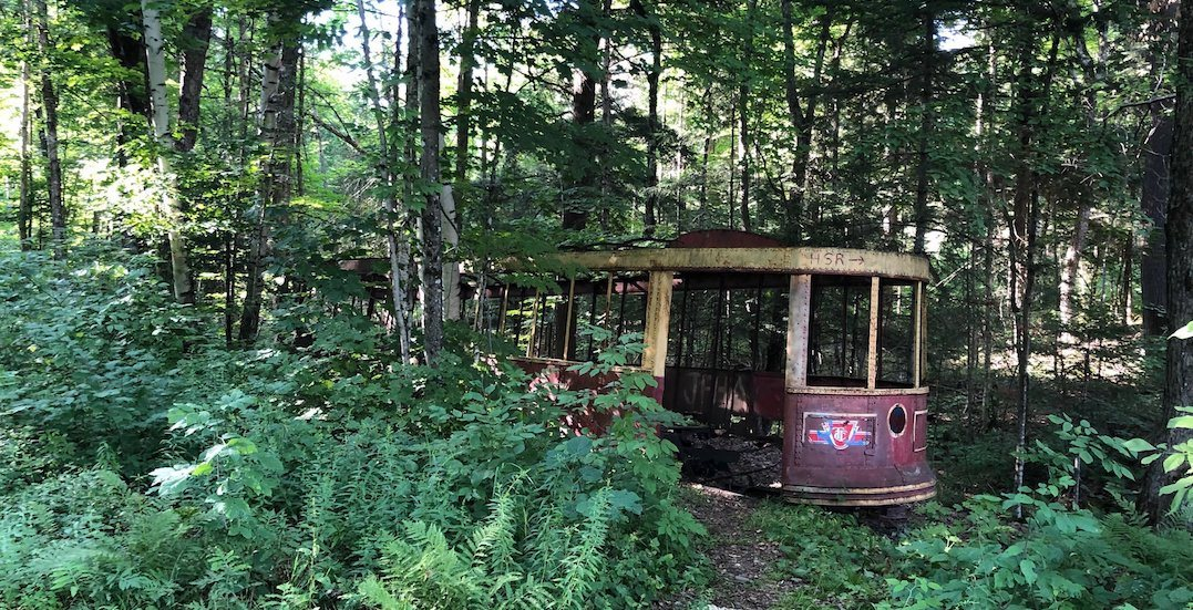 TTC streetcar spotted in the middle of an Ontario forest (PHOTOS)