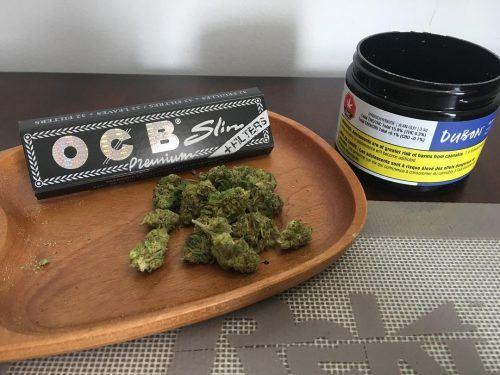 cannabis Montreal