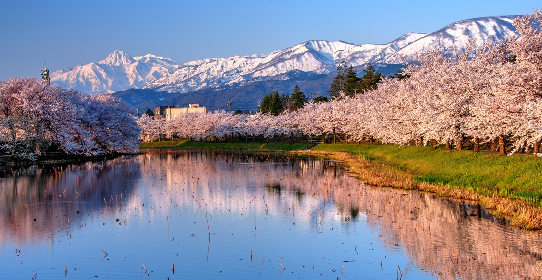 You can fly from Vancouver to Japan for under $600 this fall