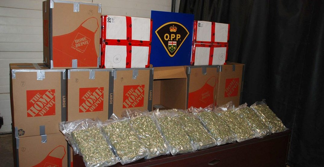 Impaired driving tip leads to seizure of over 400 pounds of cannabis: police