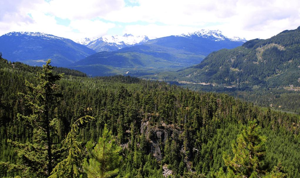 Crater Rim Trail / Vancouver Trails