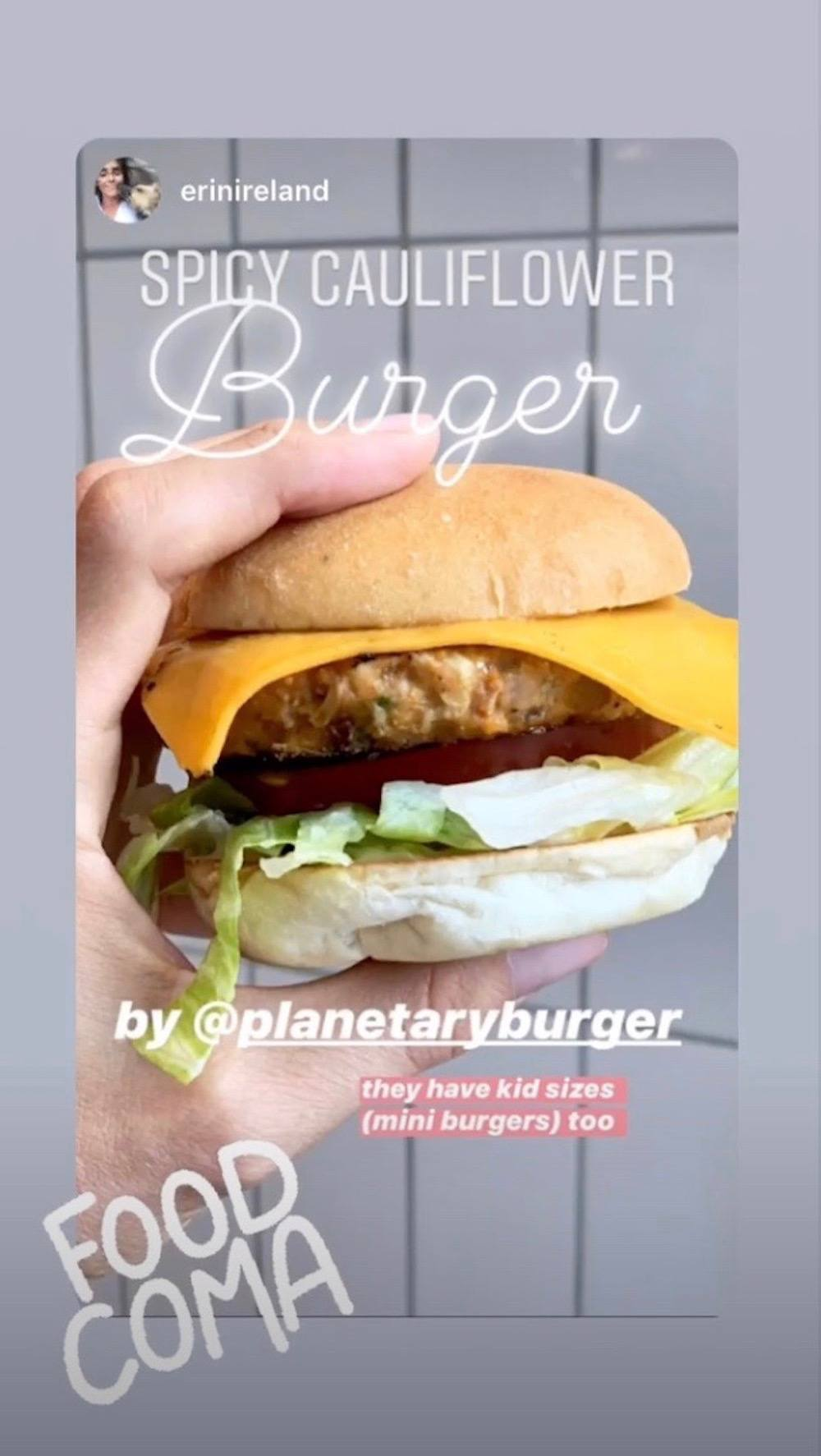 Planetary Burger