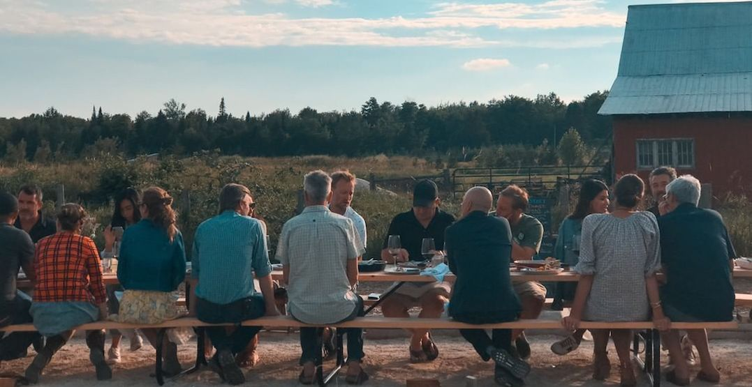 Gourmet chefs serving dinner on a farm to fight climate change tomorrow