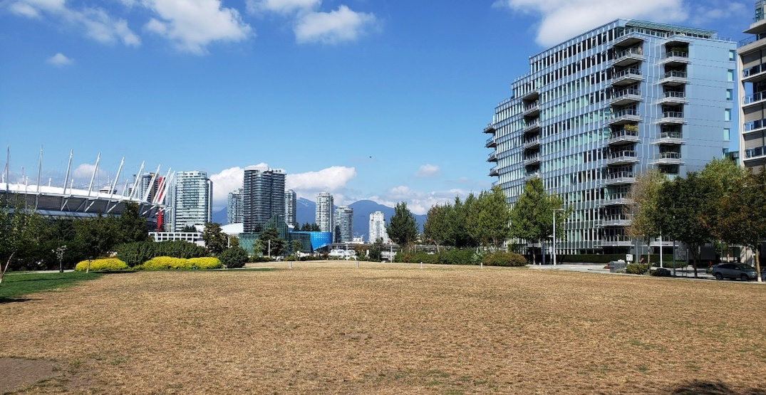 Vancouver councillor renews calls for new Olympic Village elementary school