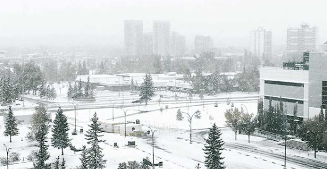 19 photos of Calgary covered in snow this morning
