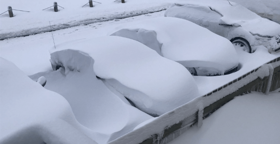 Sunday's September snowfall broke records in Alberta (PHOTOS)