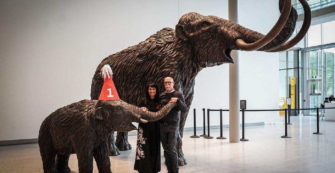 The Royal Alberta Museum saw record attendance in its first year