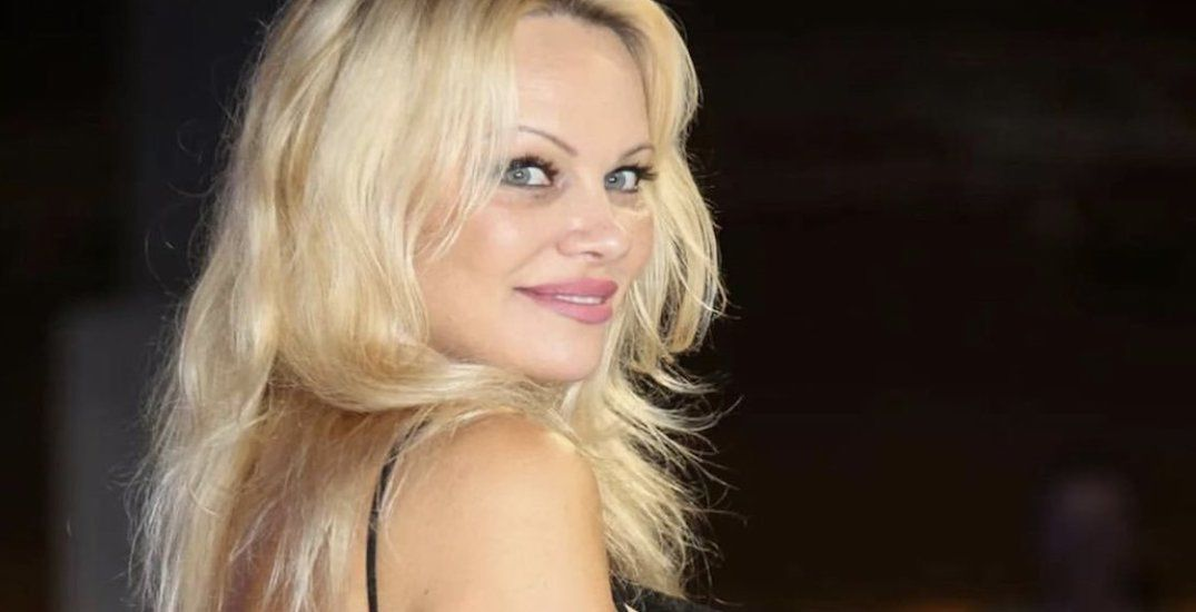 Pamela Anderson urges BC town to spare 'safe haven for wildlife' from future road