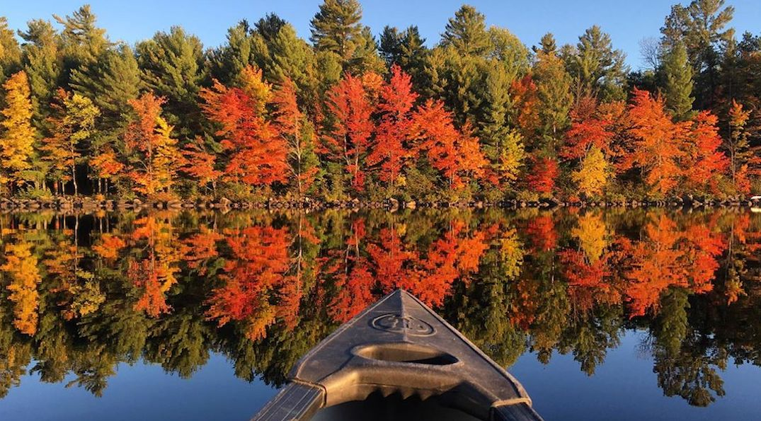 Best places to see beautiful fall foliage in Ontario over the Thanksgiving weekend