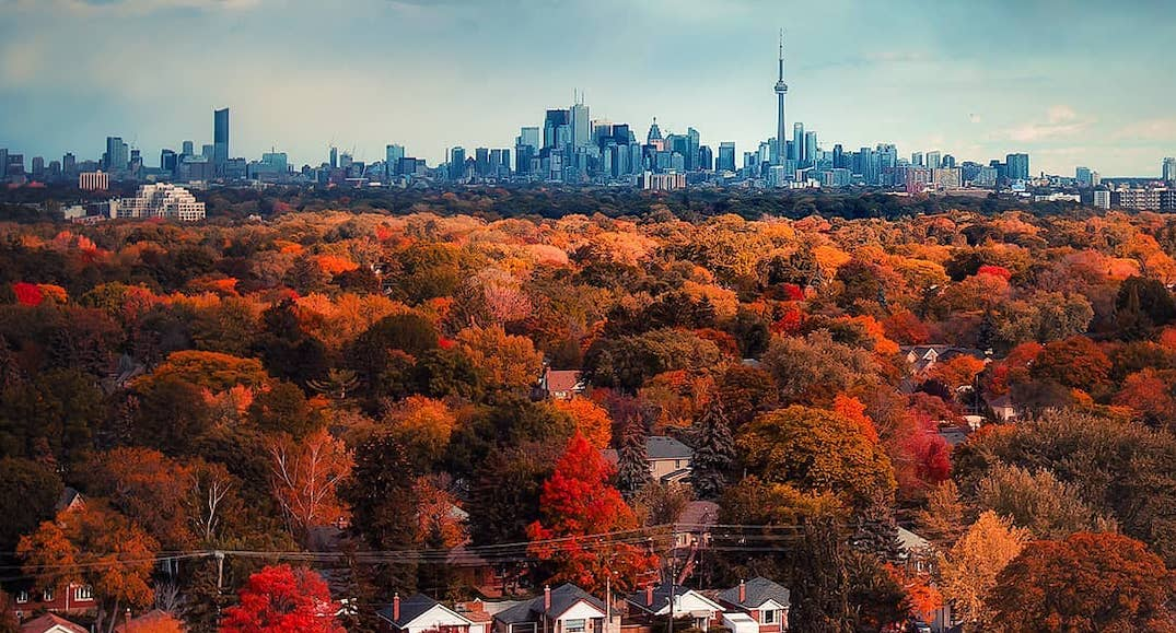 18 photos that will make you fall in love with autumn in Toronto
