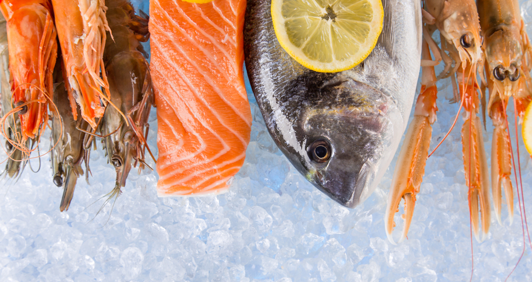 More than 25% of Vancouver seafood products are mislabelled: study