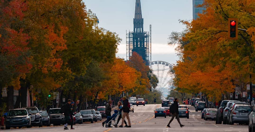 5 things to do in Montreal today: Thursday, October 17