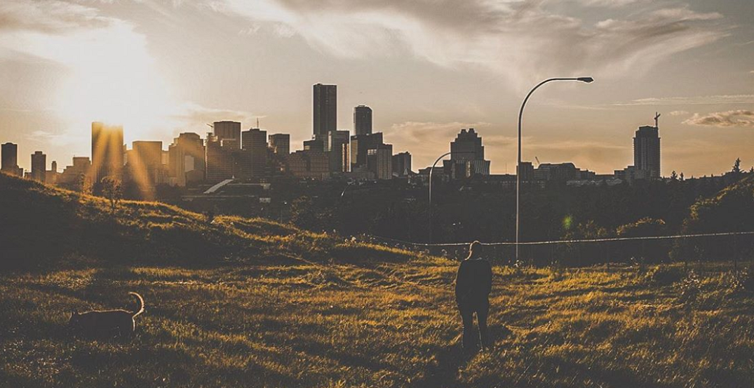 10 local favourites you need to check out in Edmonton