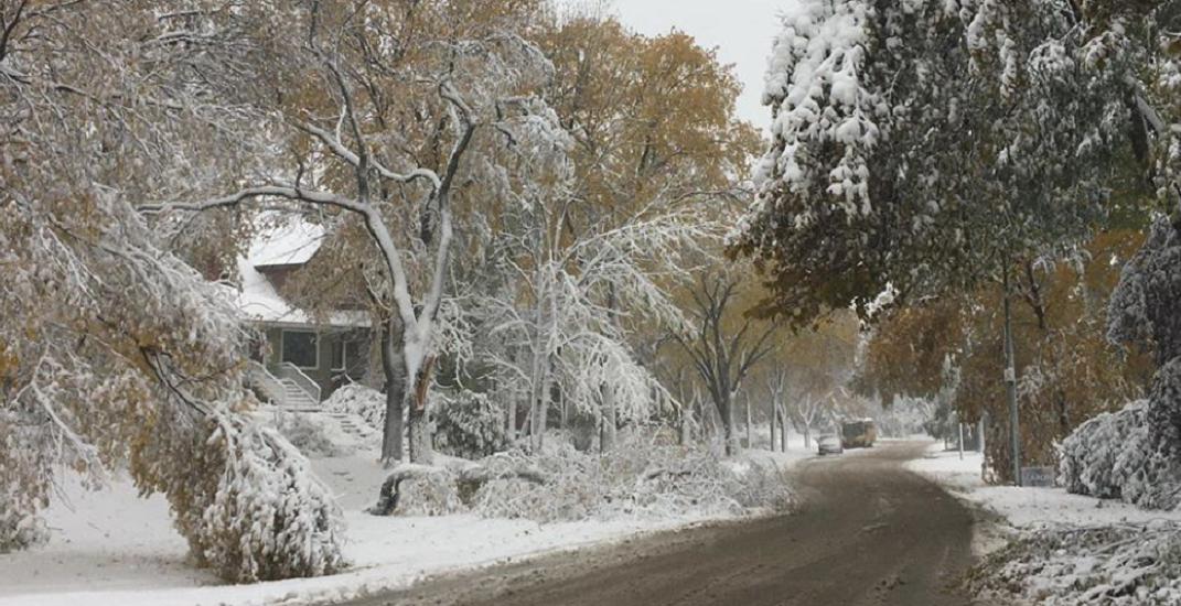 City of Calgary sending fleet of trucks to help a snowed-in Winnipeg
