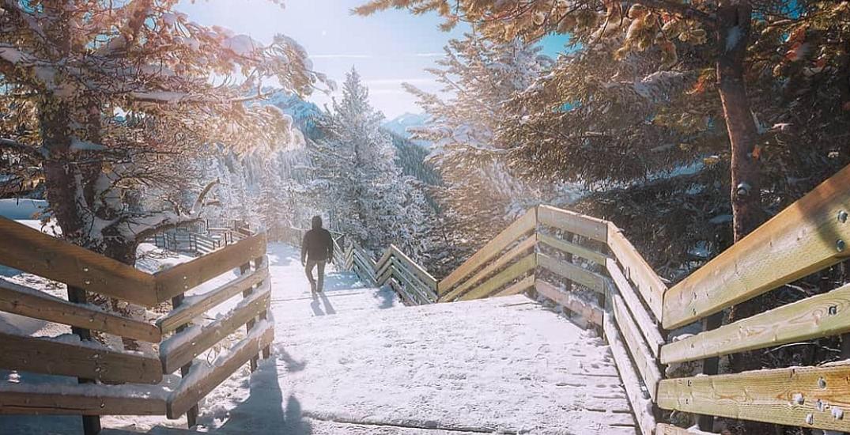 Check out Banff Gondola's Mountaintop Christmas this holiday season