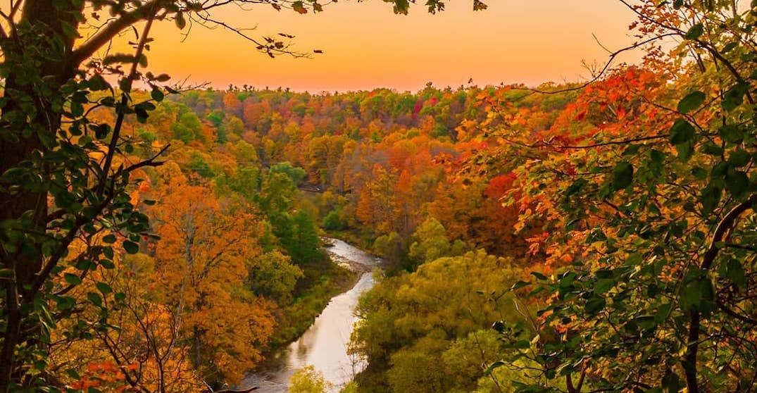 Where to see beautiful fall foliage in Ontario before the season ends