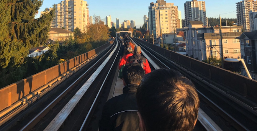 UPDATED: Major SkyTrain delays after a tree falls onto the tracks