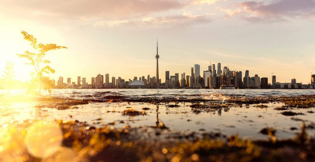 8 things to do in Toronto today: Sunday, November 3