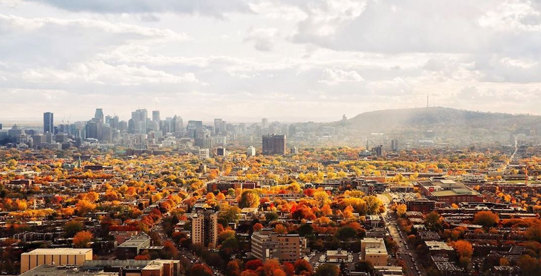 10 things to do in Montreal today: Saturday, November 2