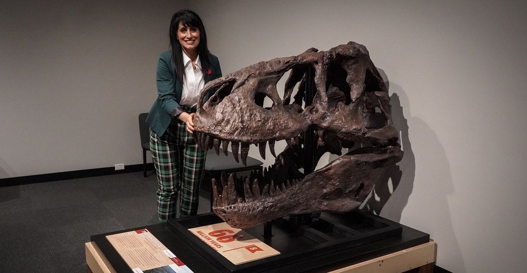The Royal Alberta Museum is now home to Canada's most famous fossils