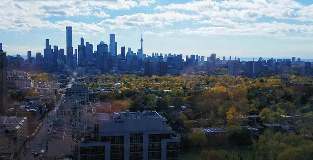 5 things to do in Toronto today: Monday, November 11