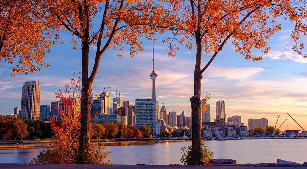 25 things to do in Toronto this weekend: November 8 to 10
