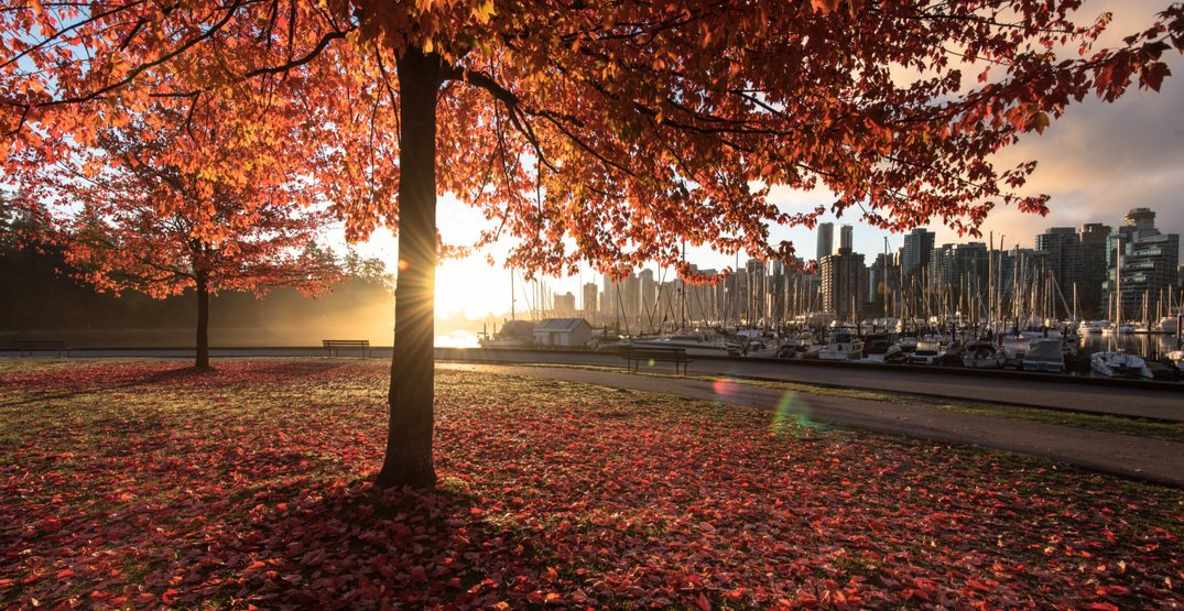 Vancouver just broke a record for longest dry stretch ending in November