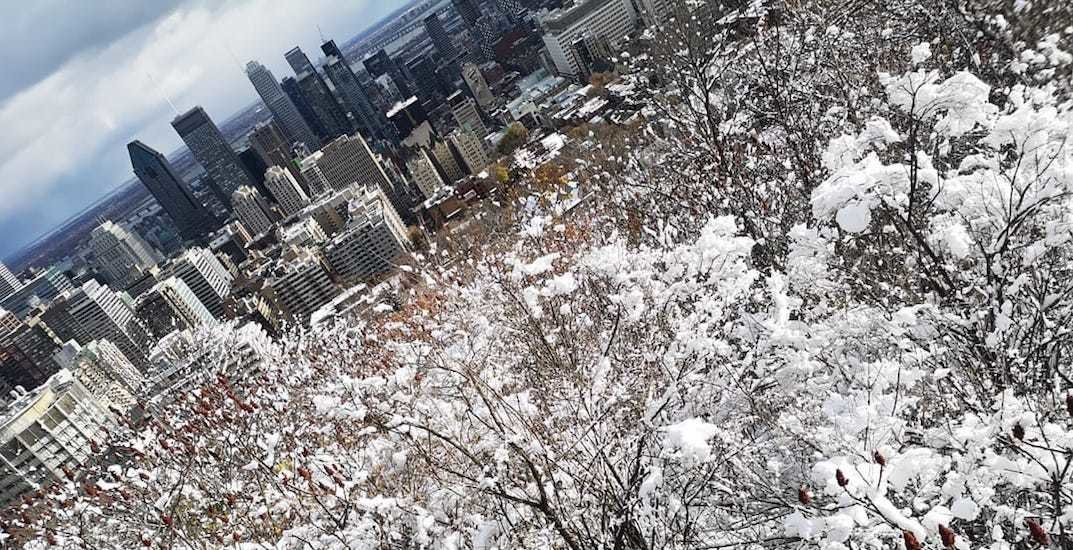 Monday's snowfall turned Montreal into a winter wonderland (PHOTOS)